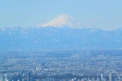 スカイツリーからの富士山