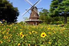 アンデルセン公園 風車