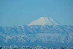 富士山 2019.2.1