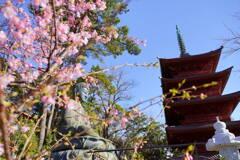 桜・大仏・五重塔