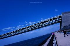 ☆Nice shot