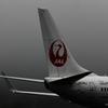 ☆日本の翼
