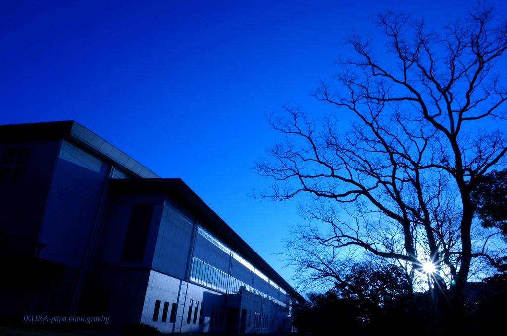 ☆ブルーな朝
