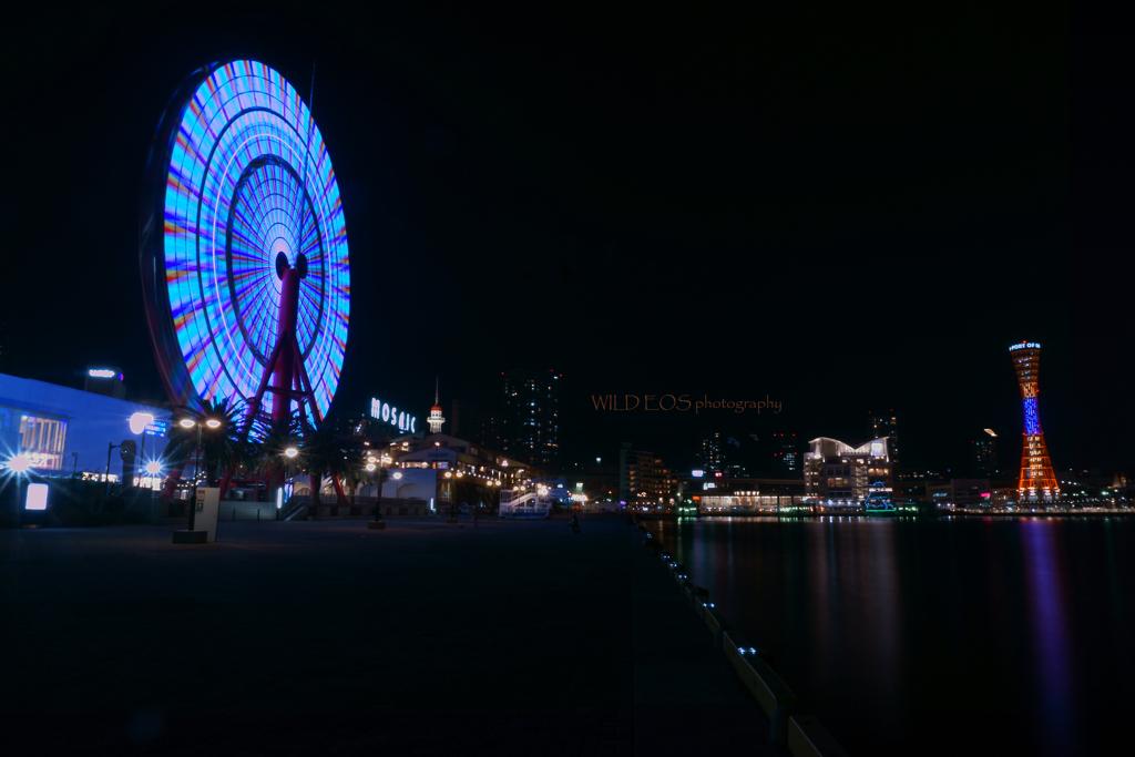 ☆Wonderful port♪