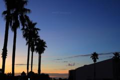ホテルカリフォルニア風な朝