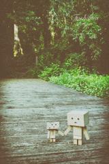 ダンボーと散歩