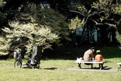 自転車に乗ってピクニック