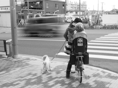 自転車に乗って