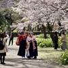 満開の桜の下の卒業