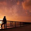 夢への架け橋