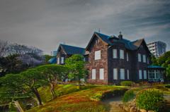 旧古川庭園の桜