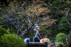 洋式庭園にて_古河庭園