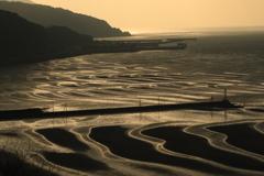 干潟・砂紋 2