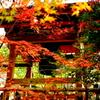 仁比山地蔵院
