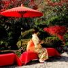 日本の美 Ⅱ