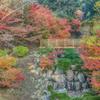 清水の滝の紅葉-3