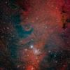 NGC2264_2020.01.03