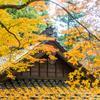 杉山白石神社にて