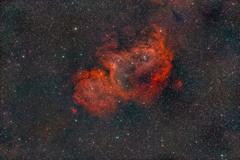 IC1848_2019.11.15