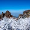 立岩の峰の霧氷