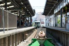 鎌倉の見張り番