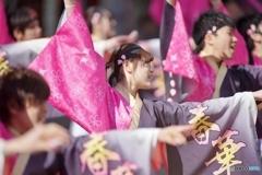 浜松がんこ祭り・日本大学工学部桜家一門YOSAKORI隊「春華」