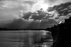 Monochrome sunset #11
