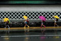 ランドセルと小さい傘