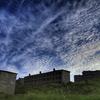 雲上の楽園