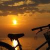 夕陽自転車