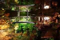 高台寺 鏡池
