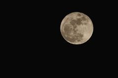 Diamond moon