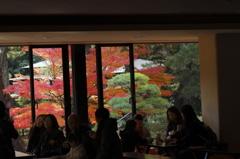 錦秋の横浜三渓園2