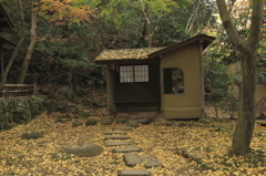 錦秋の横浜三渓園4