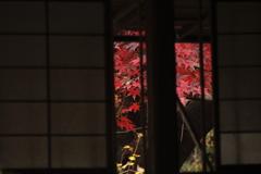 錦秋の横浜三渓園5