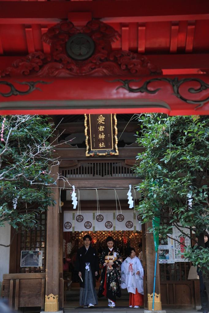 愛宕神社~結婚式