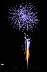 DSC_4613_277 初めての花火撮影
