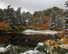 大雪高原温泉 雪化粧