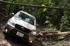 新体験SUV 【林道③】