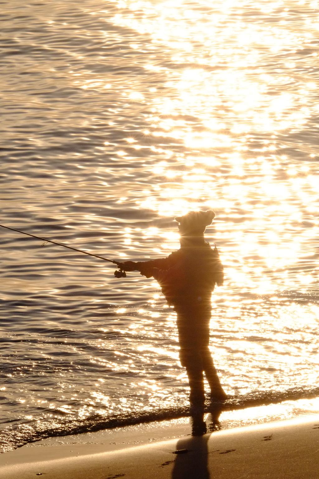 Fisherman in dusk