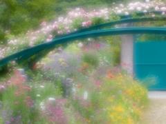 花の季節6