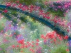 花の季節5