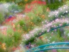 花の季節7