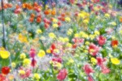 春の印象2