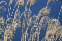 風のオブジェ