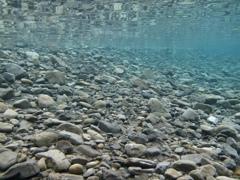 夏の野根川河口4