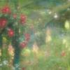 花の時間と色7
