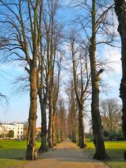 Footpath of Canterbury