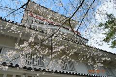 akita castle