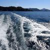 Cruising!!!